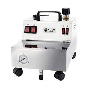 EOLO GV05 P Professioneller Dampfreiniger mit 5 Bar Trockendampf und 2,4 Liter Behälter zur Reinigung und Desinfektion